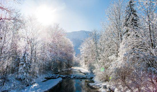 11-verschneite-traun