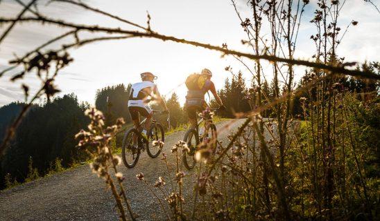 2-mountainbike-am-unternberg